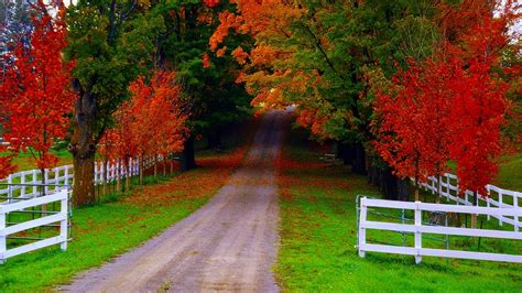 Fall Backgrounds by Cool Fall Backgrounds Wallpaper Cave