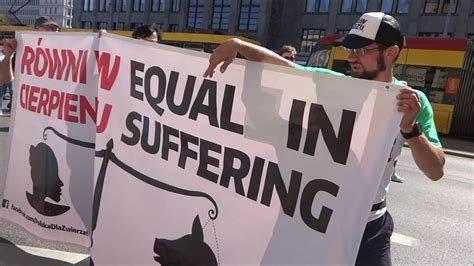 official animal rights march  youtube