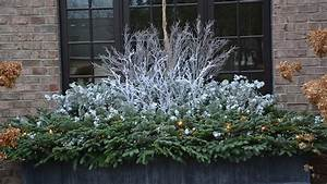 Winter Windowboxes: Find Your Style Grow Beautifully
