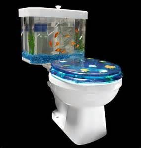aquarium posts photos and bookmarks related fish
