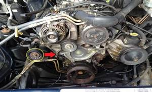 Dodge Ram 2nd Generation 1994 2001 How To Replace Serpentine Belt
