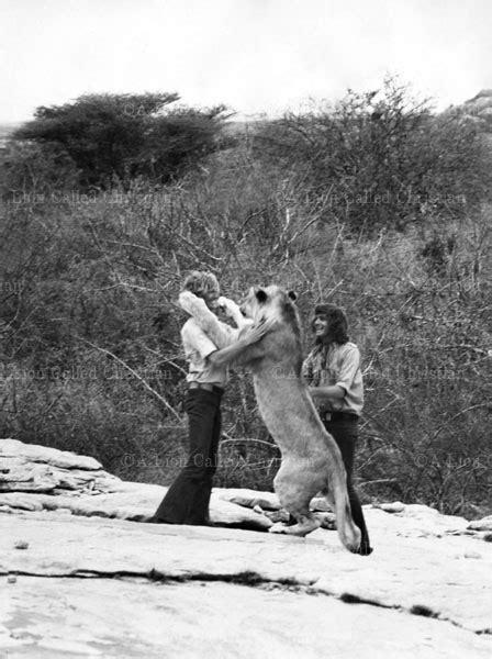 images  christian  lion  pinterest