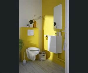 Décoration wc jaune