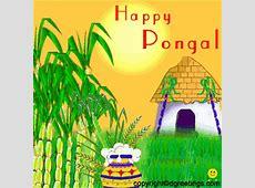 Live Chennai Happy Pongal & Sankranthi to you & your