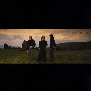E S P Bee Gees Songs Reviews Credits Allmusic