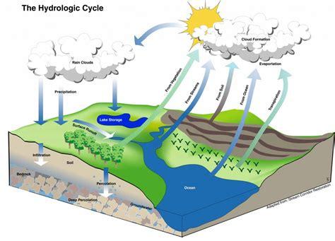 The Metropolitan Field Guide The Hydrologic Cycle  The Metropolitan Field Guide