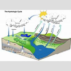 The Metropolitan Field Guide The Hydrologic Cycle The