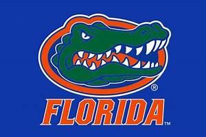 Florida Gator Head Blue Flag – www.gatorstate.com
