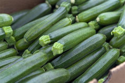cuisiner les courgette cuisine estivale 4 astuces pour bien cuisiner la