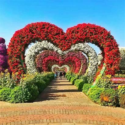 Dubai Garden Miracle Valentines Valentine Heart