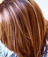 Brown and Blonde Hair with Auburn Highlights