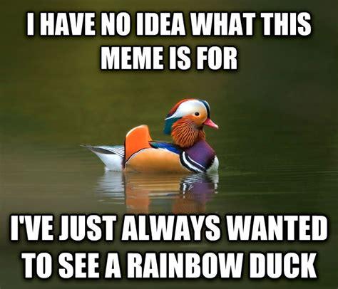 I Have An Idea Meme - livememe com fashionable advice mallard