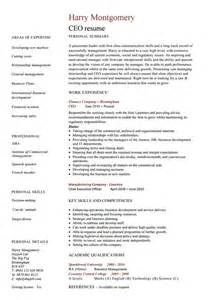 Ceo Resume Format by 10 Ceo Resume Templates Free Word Pdf