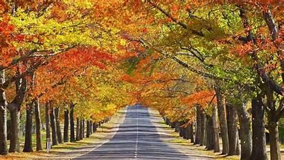 Autumn Wallpapers Season Wallpapersafari
