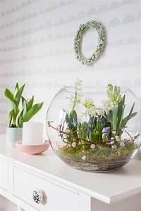 Blumenzwiebeln Im Glas : die besten 25 gl ser dekorieren ideen auf pinterest gl ser einmachgl ser basteleien und ~ Markanthonyermac.com Haus und Dekorationen