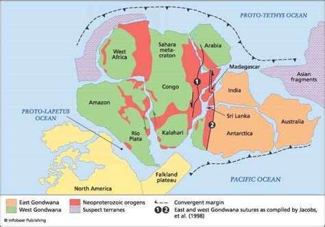 Panafrican belts and the - Plate Tectonics - Climate ...