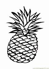 Coloring Pineapple Popular sketch template