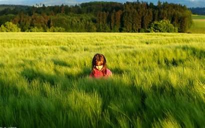 Nature Children Meadow Shadow Grass Trees Sun