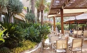 aparthotel viva tropic spa puerto de alcudia mallorca With katzennetz balkon mit aparthotel alcudia garden puerto de alcudia