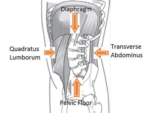 Pelvic Floor Dyssynergia Exercises by Pelvic Floor Therapy Great Pelvic Floor Physical Therapy