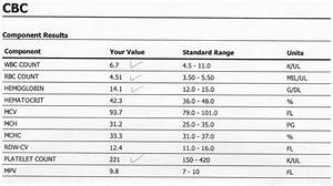 Understanding Your Cbc  Complete Blood Count  Test Results
