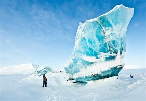 Fantastic Aurora Borealis - Picture of Svalbard Husky ...