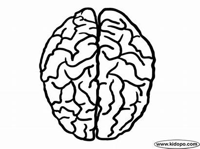 Brain Coloring Human Pages Mindset Growth Printable