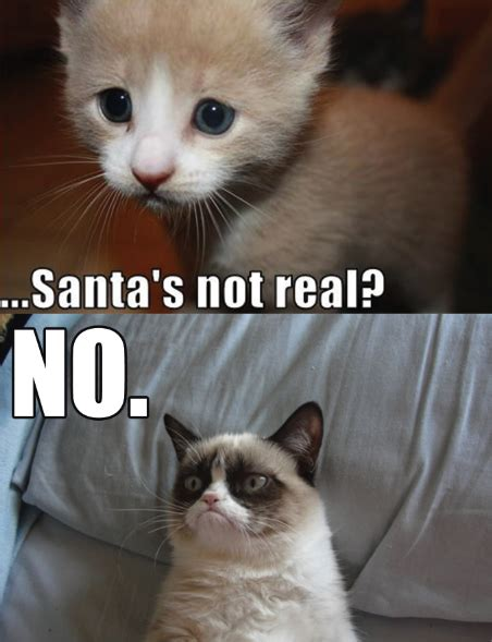 No Grumpy Cat Meme - santa no grumpy cat know your meme