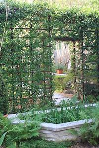 Inspiring, Garden, Dividers, 11, Garden, Trellis, Ideas