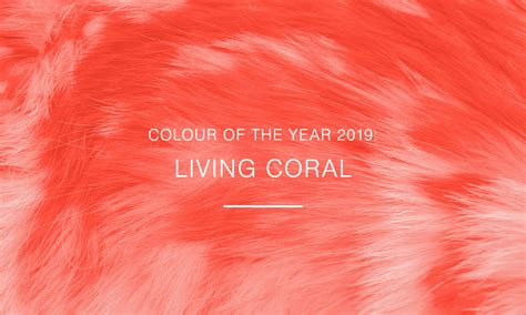 how to make the color coral colour of the year living coral how to make it work for