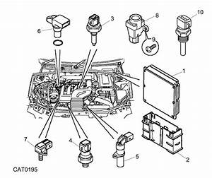 Rover 75  Mg Zt Engine Ecu And Sensors