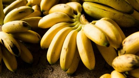cuisine ayurveda how to stop bananas from spoiling 5 smart tricks ndtv food