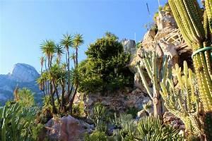 Jardin exotique de monaco cactuses and breathtaking for Photo de jardin exotique