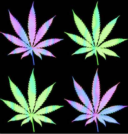 Weed Marijuana Marihuana Psychedelic Gifs Plant Mota