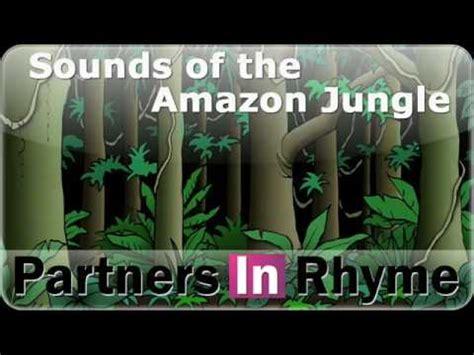 sounds   amazon jungle  sound effectcom youtube