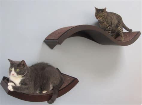 women  designed  houses   cats