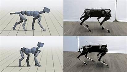 Skills Locomotion Robots Different Animal System Reproduce