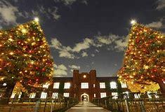 立教大学  クリスマス に対する画像結果
