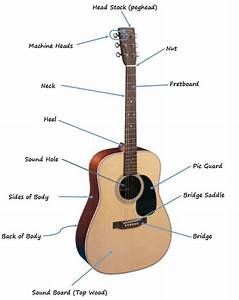 How To Choose An Acoustic Guitar That U0026 39 S Right For You