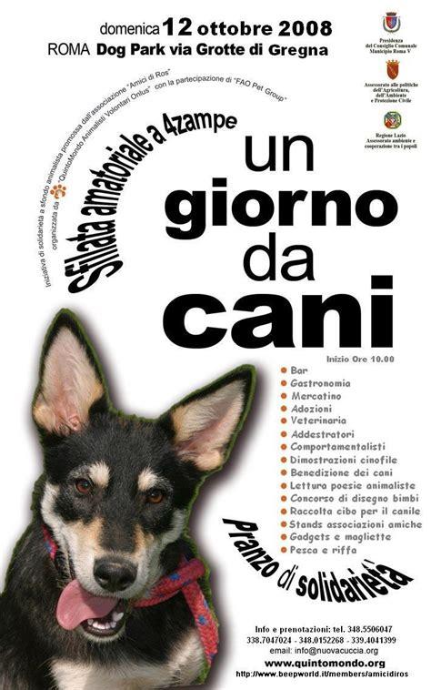 Festa Un giorno da Cani da Associazione Quintomondo