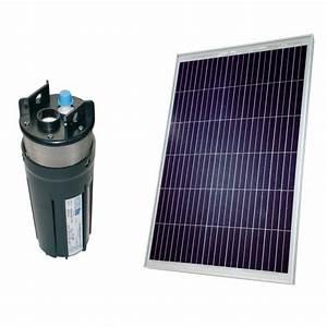 Pompe Eau Puit : kit pompe solaire 80w avec pompe shurflo 9325 chez ~ Edinachiropracticcenter.com Idées de Décoration