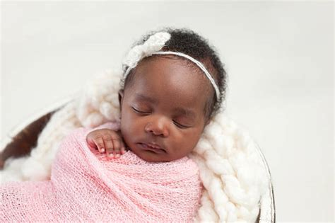newborn baby girl stock  pictures royalty