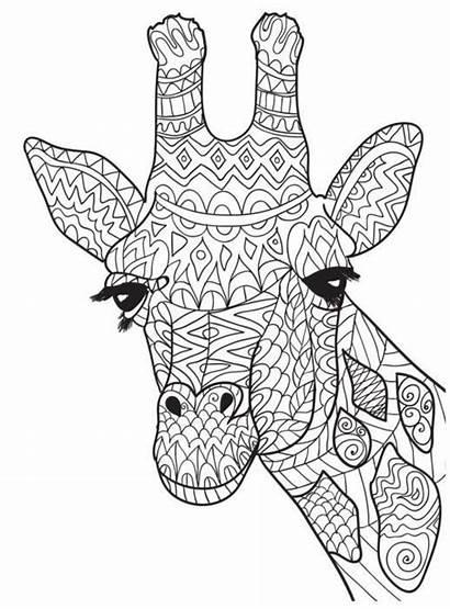 Giraffe Mandala Coloring Pages