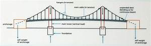 How Do Suspension Bridges Work