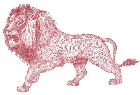 Free Antique Clip Art Pen Flourished Lion The Graphics