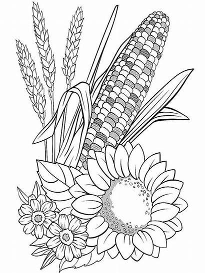 Pflanzen Ausmalbilder Coloring Malvorlagen Ausdrucken Kostenlos Zum