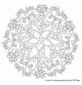Coloring Pages Complex Mandala Adults Kleurplaten Flower Sheets Flowers Christmas Adult Sun Thesunflowerpages Xyz Books Read sketch template