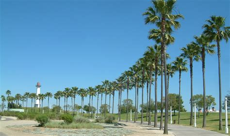 long beach california visitor guide what to do jeans
