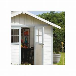 Abri De Jardin En Pvc : abri de jardin en pvc 11 2m deco blanc et gris bleu ~ Edinachiropracticcenter.com Idées de Décoration
