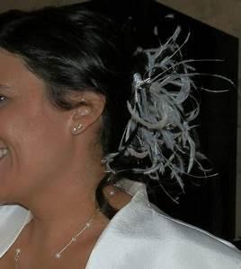 Peigne Cheveux Mariage : peigne cheveux pour mariage avec plumes occasion du mariage ~ Preciouscoupons.com Idées de Décoration